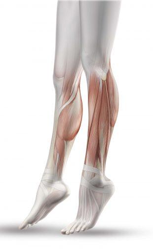 calambres musculares